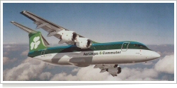 Aer Lingus Commuter BAe -British Aerospace BAe 146-300 EI-CLG